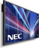 NEC P703 PG