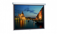 Projecta ProScreen 220x220см Matte White