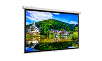 Projecta ProScreen CSR 220х220см Matte White